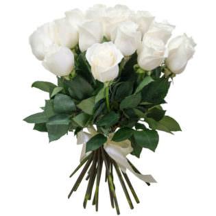 Розы Кения белые